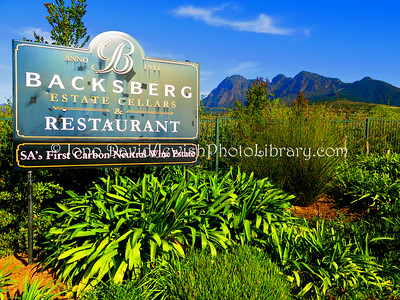 ZA 18975  Backsberg Estate Cellars (Jewish founded 1916, owned by Back family)  Stellenbosch, South Africa
