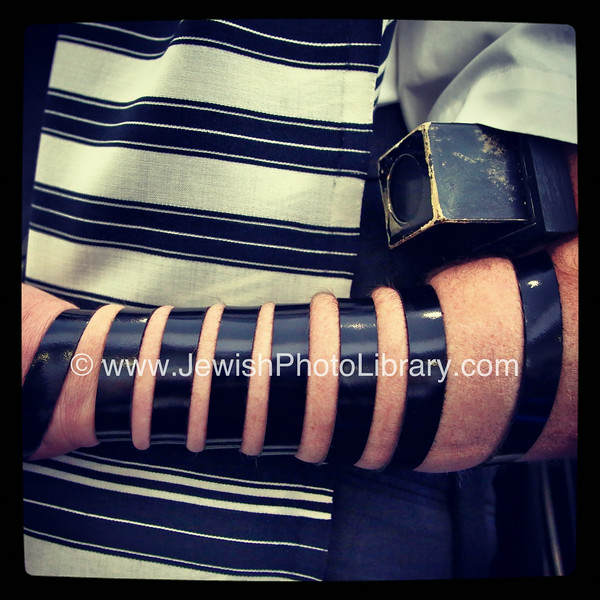 Tefillin, Chabad of Norwood  Johannesburg, South Africa