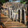Stellawood Jewish Cemetery, Durban, South Africa