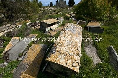 TN 219  Jewish Cemetery Borgel  Tunis, Tunisia