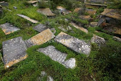 TN 210  Jewish Cemetery Borgel  Tunis, Tunisia
