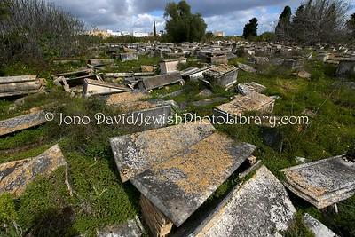 TN 244  Jewish Cemetery Borgel  Tunis, Tunisia