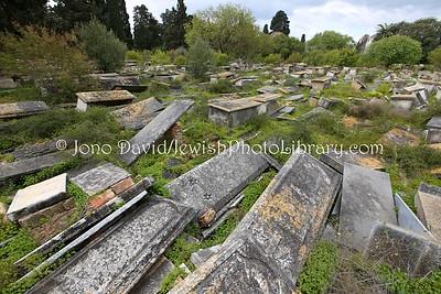 TN 311  Jewish Cemetery Borgel  Tunis, Tunisia