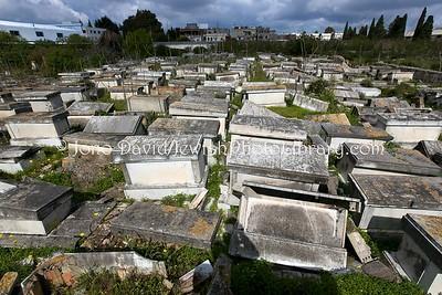 TN 179  Jewish Cemetery Borgel  Tunis, Tunisia