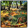 Old Jewish Cemetery, aka Kimberley Pioneer Cemetery  Kimberley, South Africa