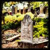 Jewish cemetery, Oudtshoorn, South Africa